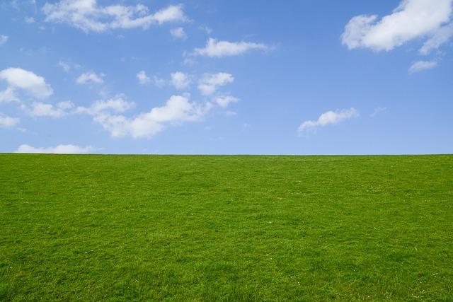 Green, Dyke, Blue, Sky, Landscape, Grass, Nature, Dike