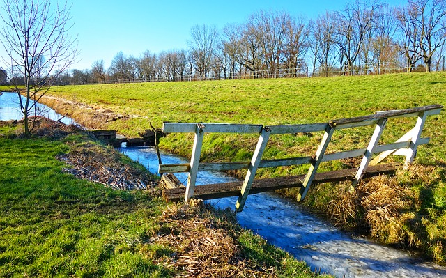 Ditch, Gate, Dike, Embankment, Tree, Grass, Rural