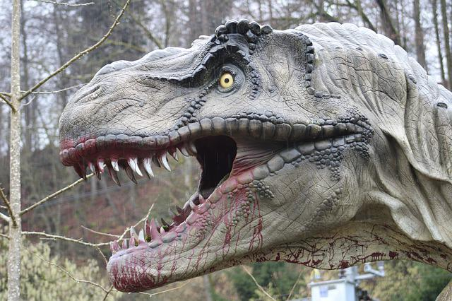 Dino, Dinosaur, Prehistoric Times, Reptile, Carnivores