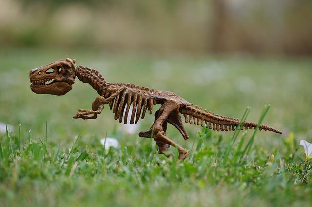Dinosaur, Bones, Rex, Toy, Grass
