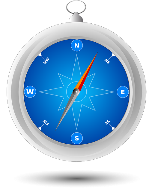 Compass, Safari, Navigation, Direction, North, South