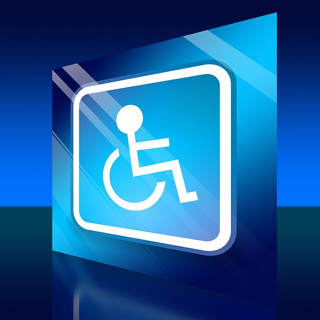 Wheelchair, Handicap, Disability, Rolli, Locomotion