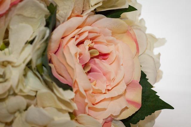 Flower, Display, Wedding, Rose, Pretty