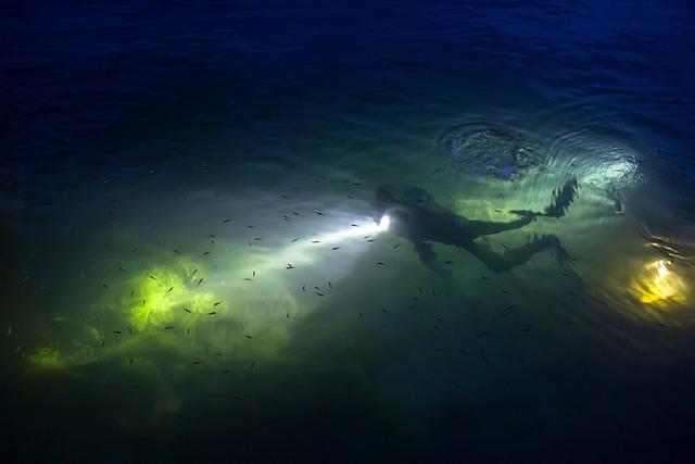 Diving, Divers, Night Diving, Rhine, River Diving