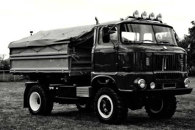 Truck, Historically, Ddr, Ifa, W50, Divided Germany