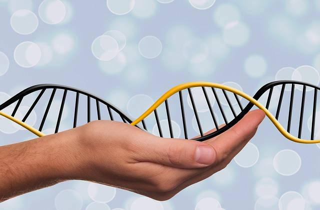 Dna, Adn, Deoxyribonucleic Acid, Dns, Genetics, Symbol
