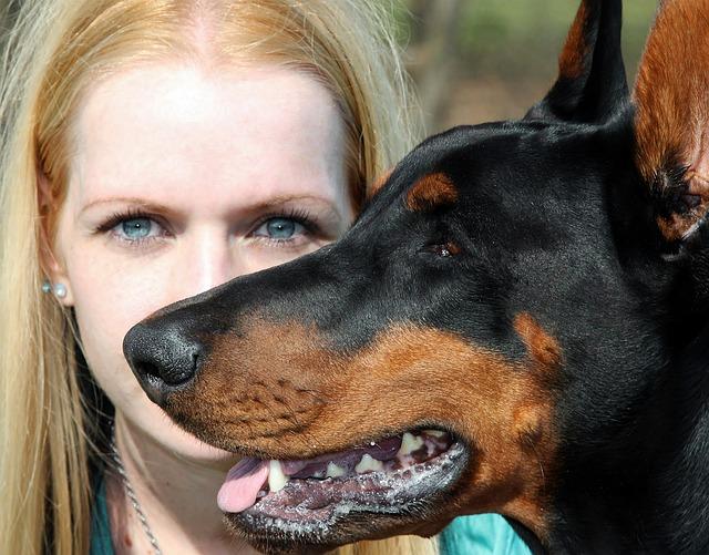 Doberman, Dog, Blonde Woman, Portrait, Blue Eye, Facial