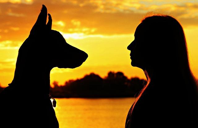Doberman, Woman, Silhouette, Sunrise, Love