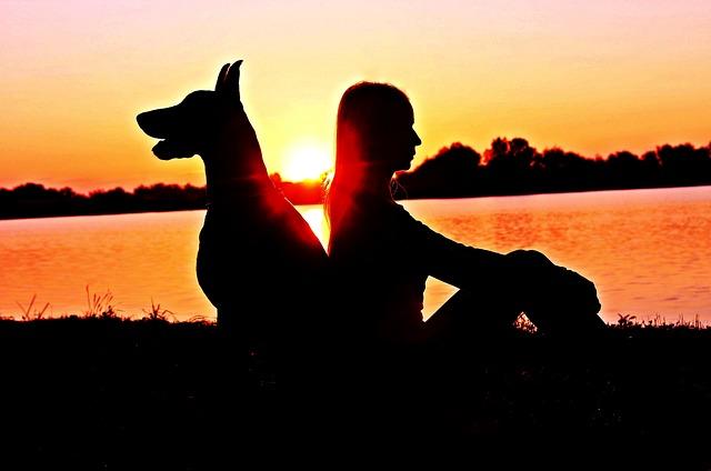 Doberman, Woman, Silhouette, Sunrise, Friendship
