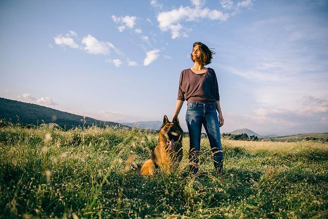 Adult, Beautiful, Countryside, Daylight, Dog, Field