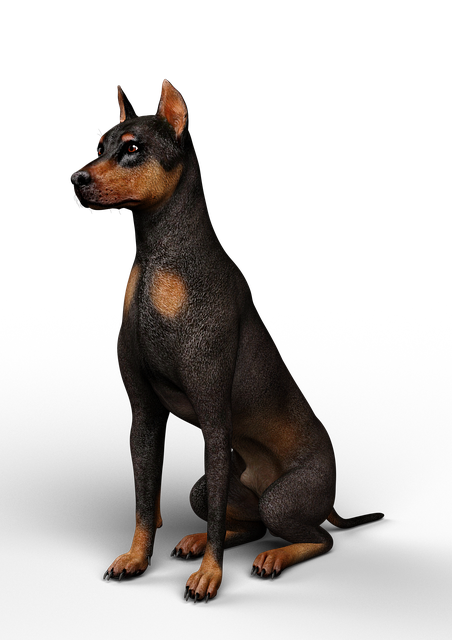 Dog, Without Background, Rendering, 3d, Animal