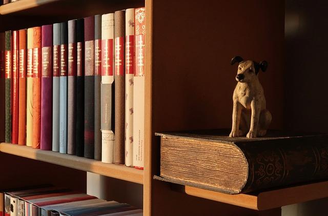 Book Shelf, Buchstütze, Books, Read, Dog, Literature