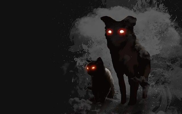 Dog, Cat, Evil, Daemon, Silhouette, Background