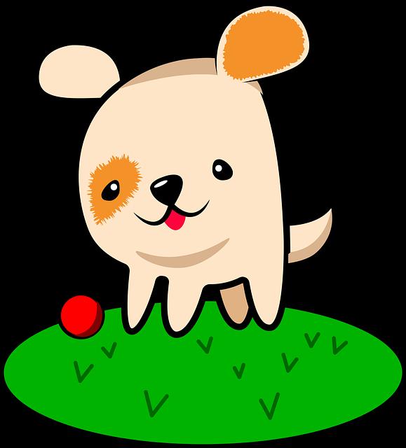 Dog, Animal, Pet, Dogs Playing, Ball, Playing, Puppy