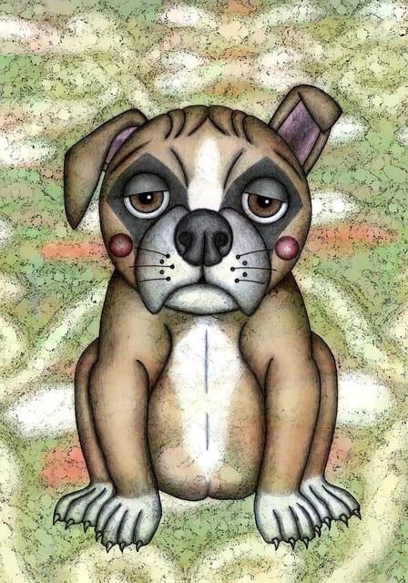 Illustration, Drawing, Animal, Dog