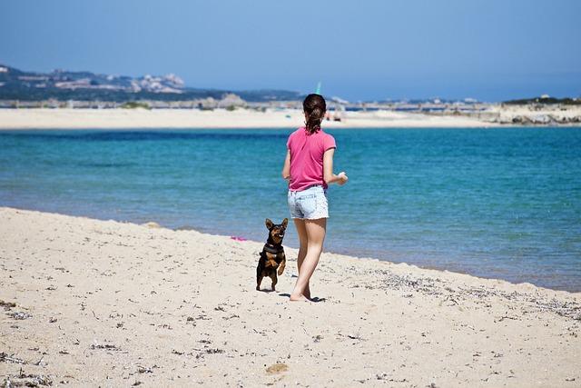 Girl, Dog, Sand, Beach, Sea, Costa, Waters, Summer, Fun