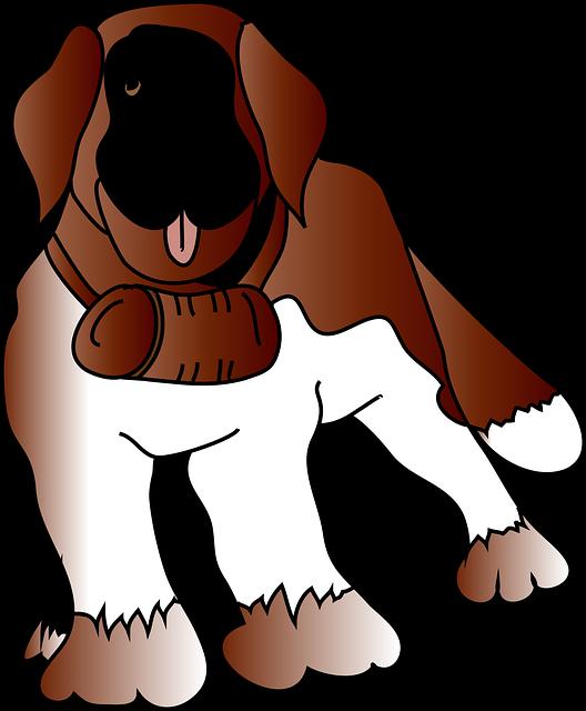 Dog, Animal, Pet, Rescue, Saint Bernard, St Bernard