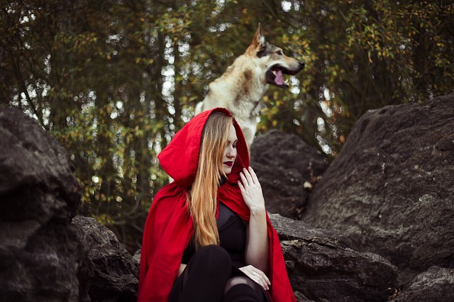 Girl, Little Red Riding Hood, Dog, Wolf, Red, Autumn