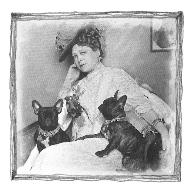 Vintage, Photograph, Lady, Dogs, Design, Photo, Old