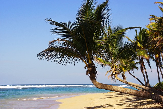 Punta Cana, Bavaro, Beach, Dominican Republic, Holiday