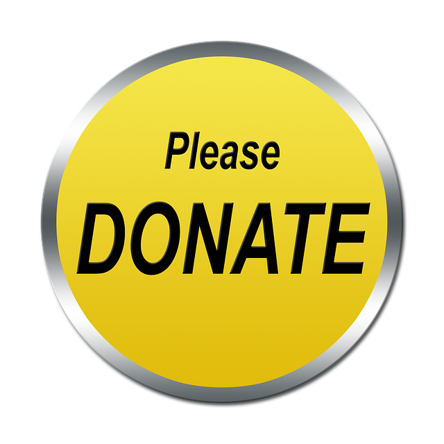 Donate, Donate Button, Donate Icon, Button, Icon