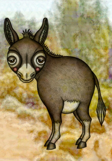 Donkey, Illustration, Drawing, Animal