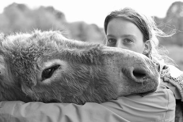 Kisses, Kiss, Girl, Donkey, Black And White Photo