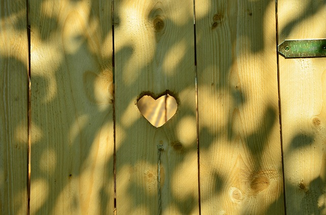 Door, Heart, Toilet, Wc, Cottage, Wood, Forest, Need