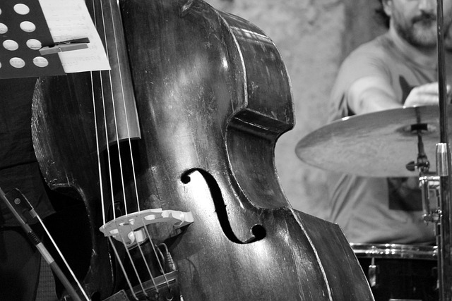 Jazz, Concert, Double Bass, Music, Drums