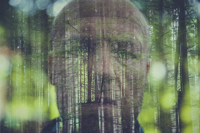 Double Exposure, Photo, Forest, Face, Man, Weird, Human