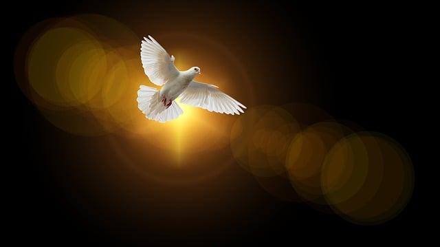 Faith, Dove, Holy Spirit, Christianity, Christian