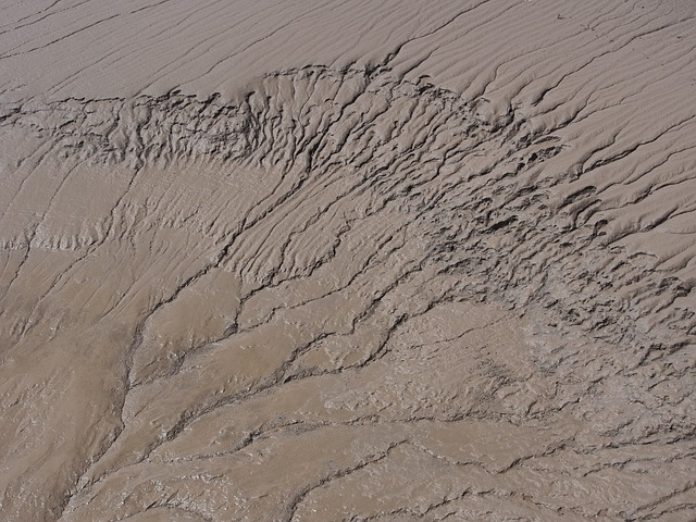 Mud, Brown, Estuary, Texture, Drainage, Pattern, Coast