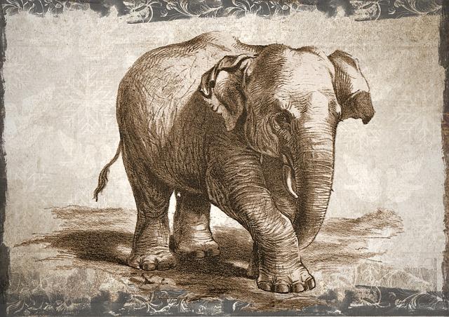 Elephant, Wildlife, Animal, Wild, Nature, Drawing