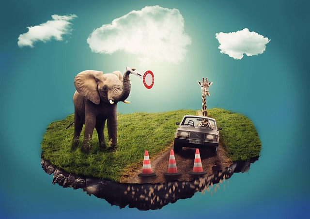 Dream, Surreal, Composition, Elephant, Giraffe, Auto