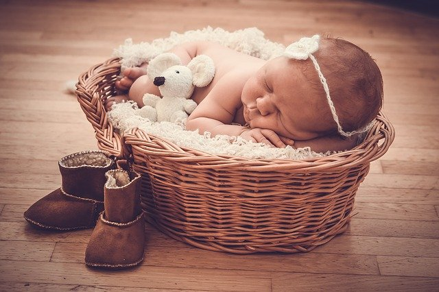 Basket, Gift, Baby, Newburn, Mouse, Toy, Dream, Sleep