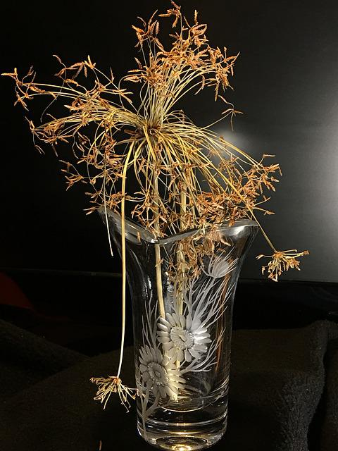 Glass, Dried Plant, Decoration, Dried Leaves