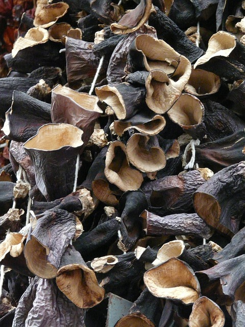 Mushrooms, Dried, Judas Ears, Dried Mushrooms, Mu Err