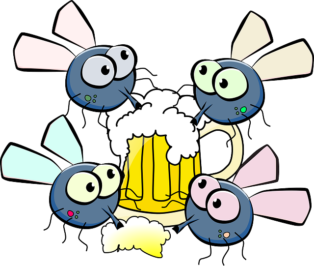 Flies, Drinking, Beer, Festival, Party, Happy, Funny