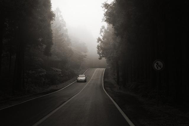 Jeju Island, Bijarimro, A Black And White Photo, Drive