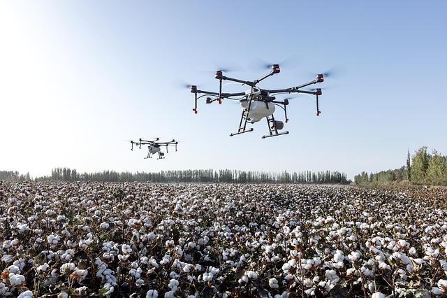 Dji, Dji Agriculture, Agriculture, Farming, Drone, Uav