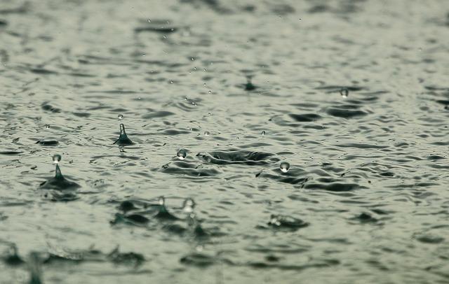 Water, Priroda, Drops, Rain