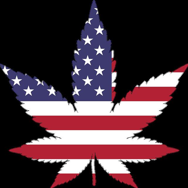 Marijuana, Drugs, Cannabis, Drug, Hemp, Leaf, Plant