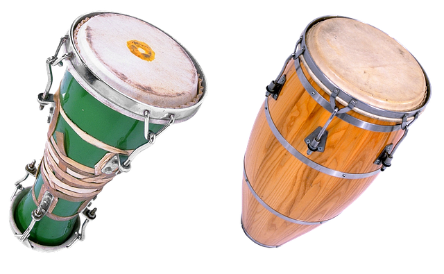 Bongo, Drums, Music, Concert, Percussion Instruments