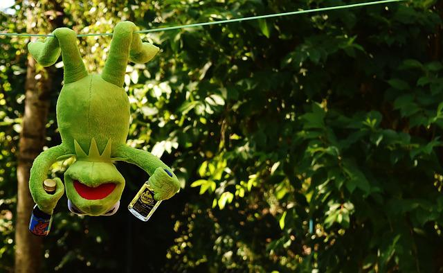 Kermit, Frog, Drink, Hang Out, Alcohol, Drunk, Rest