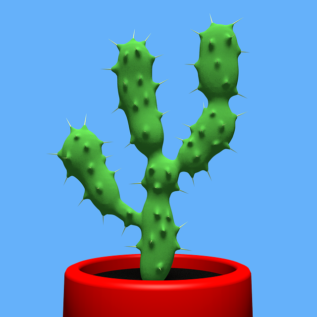 Cactus, Nature, Indoor, Dry, Spike, Spiky, Summer