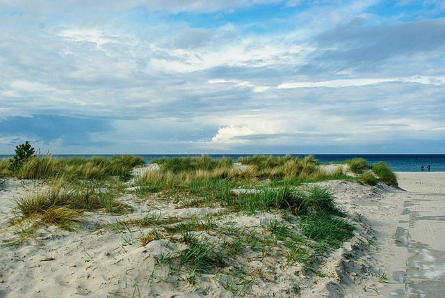 Baltic Sea, Coast, Darß, Beach, Dune, Cloudiness