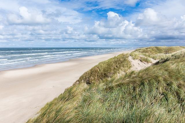 Jutland, Denmark, Beach, Sea, Dunes, Dune Landscape