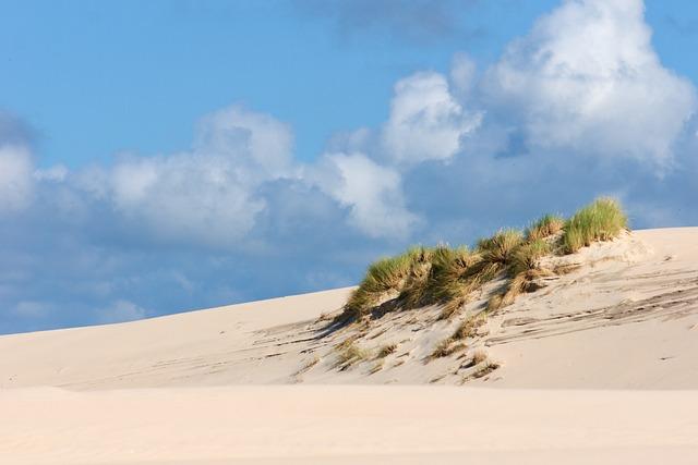 Dunes, Sand Dunes, Poland, Leba, Sand, Beach, Coast