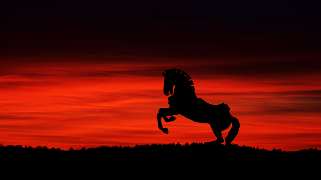 Sunset, Dawn, Sun, Sky, Dusk, Panorama, Nature, Horse
