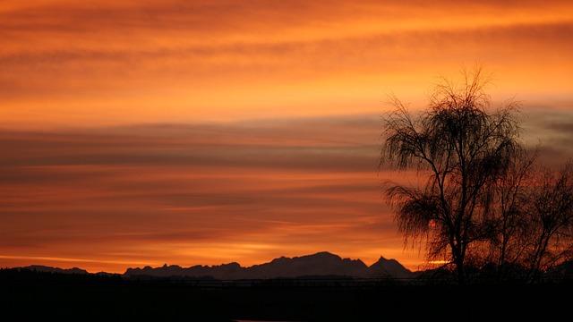 Sunset, Dawn, Nature, Dusk, Sun, Evening, Tree